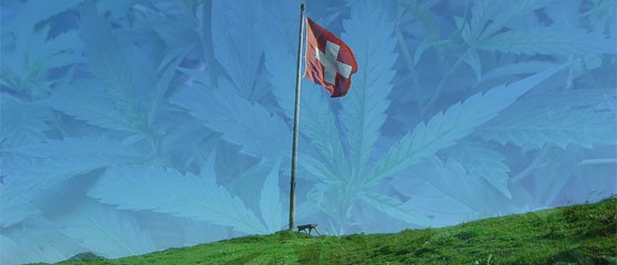 A form of cannabis is being legally bought, sold, and consumed in Switzerland