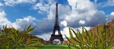 What do the French presidential candidates think about cannabis?