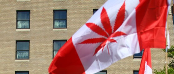 Recreational cannabis sales in Canada are set to begin in July 2018