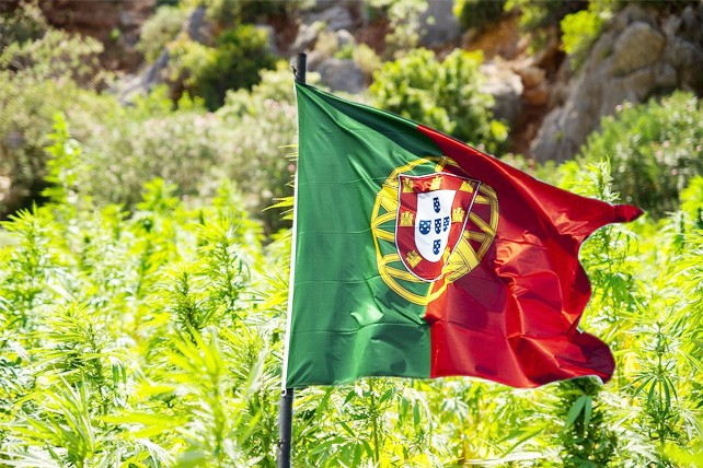 Portugal Rejects Recreational Cannabis, as Medical Becomes