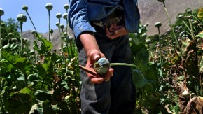 In The World's Forgotten Borderlands, The Drug Trade Helps People Survive – But At A Cost
