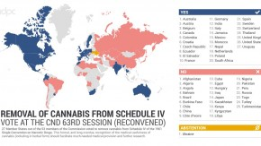 UN Green Lights Medicinal Cannabis But Fails To Challenge Colonial Legacy Of Its Prohibition