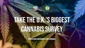GDS: The UK's Biggest Ever Cannabis Survey