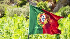 Portugal Rejects Recreational Cannabis, as Medical Becomes Legal