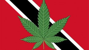 Trinidad and Tobago to Decriminalise Cannabis, Consider Legalisation