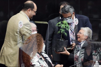 Mexico marijuana legalisation reform