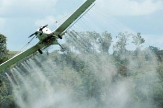 Colombia aerial fumigation of coca