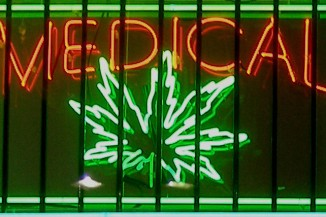 The use of cannabis for medical purposes is permitted in 29 US states and Washington DC